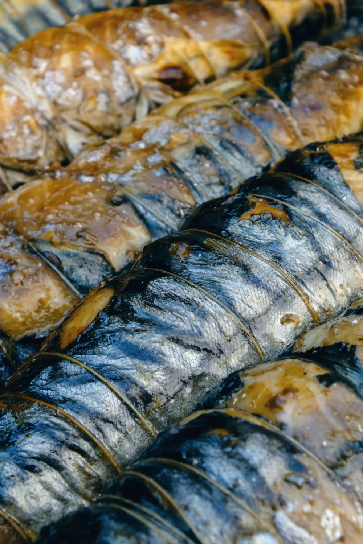 Røgeri med lækre fisk i Hanstholm